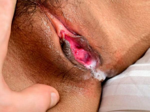 Hd Close Up Cock Sucking